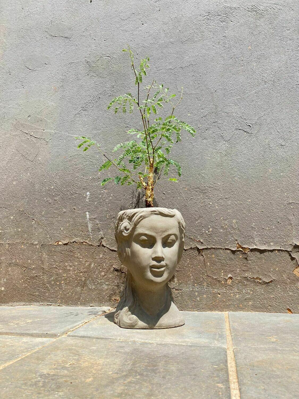Lady Anna Planter Head Painted Light Grey - H250mm x W150mm - 5.8kg