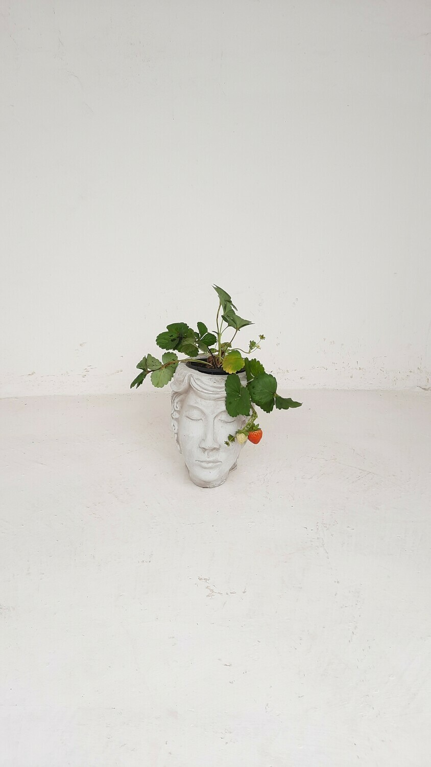 Eve Head Vase Cement Finish - H230mm x W150mm - 3kg