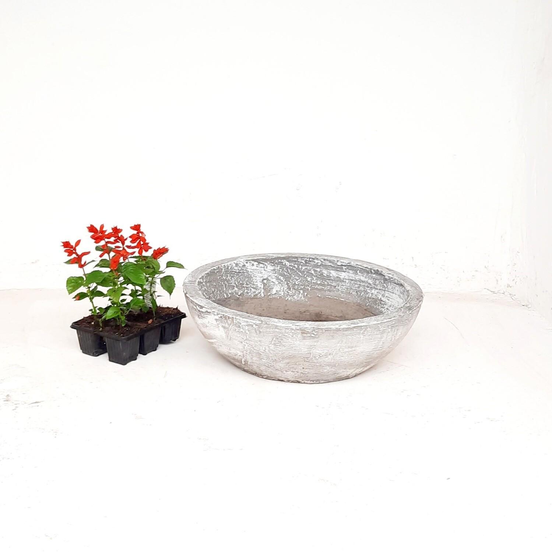 Crassula & Cactus Pot Large Whitewash Finish - H104mm x W440mm -  8 kg