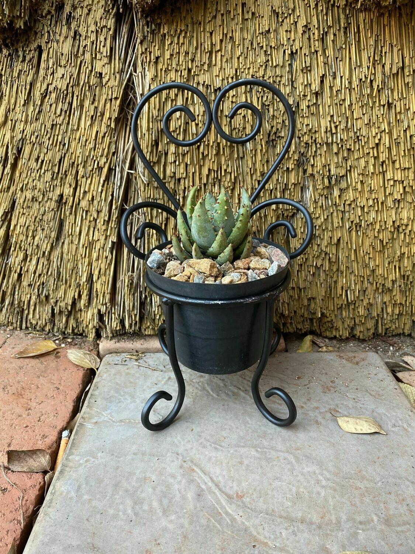 Steel Heart Plant Pot Chair for 10cm Plant Pot Black - H268mm x W180mm