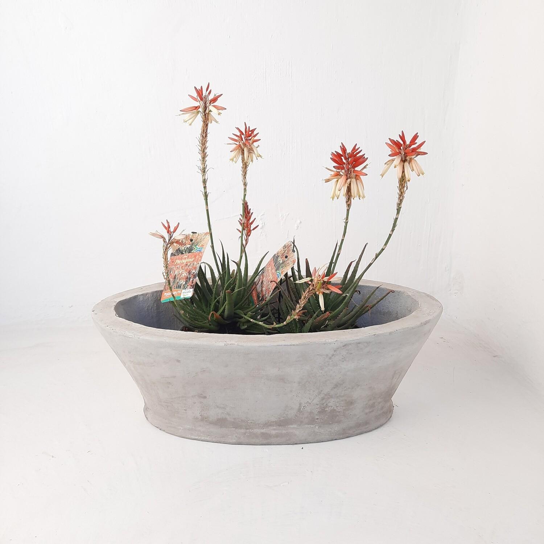 Oval Flower Box Cement Finish - H220mm x W300mm x L585mm