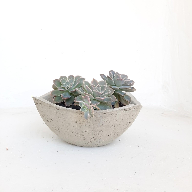 Ekono Lily Bowl Cement Finish - H100mm x W265mm