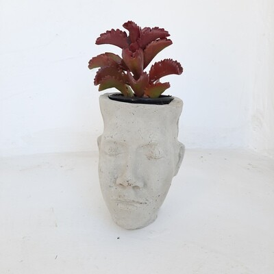 Adam Head Planter Cement Finish - H240mm x W150mm - 3kg