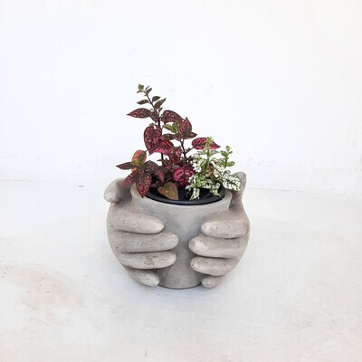 Pot with Hands Cement Finish - H170mm x W190mm