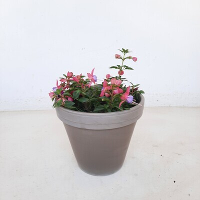 Flower Pot Basalt 22cm