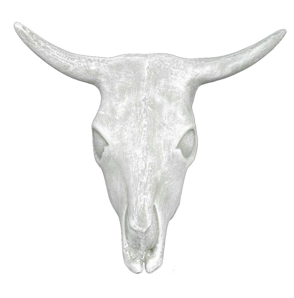 Cattle Head Wall Mount Whitewash Finish - H400mm x W490mm - 11kg