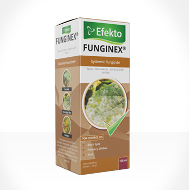 Funginex 100ml