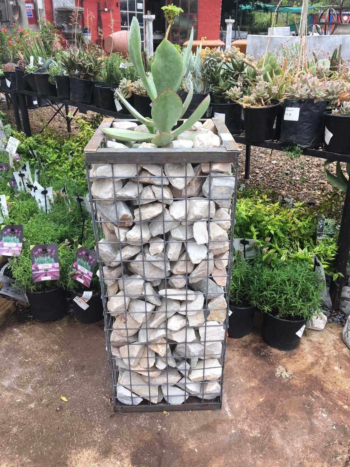 Wire Mesh Rock Planter X-Small H 300mm W 300mm   (excl rocks)