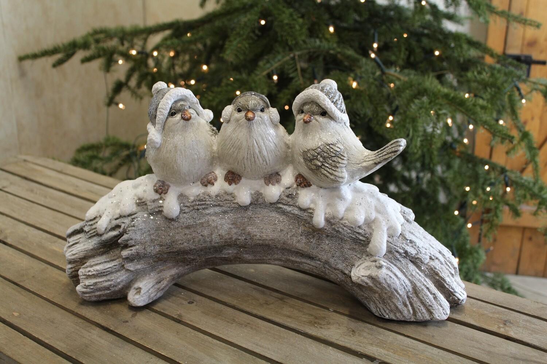 Vogels op boomstam