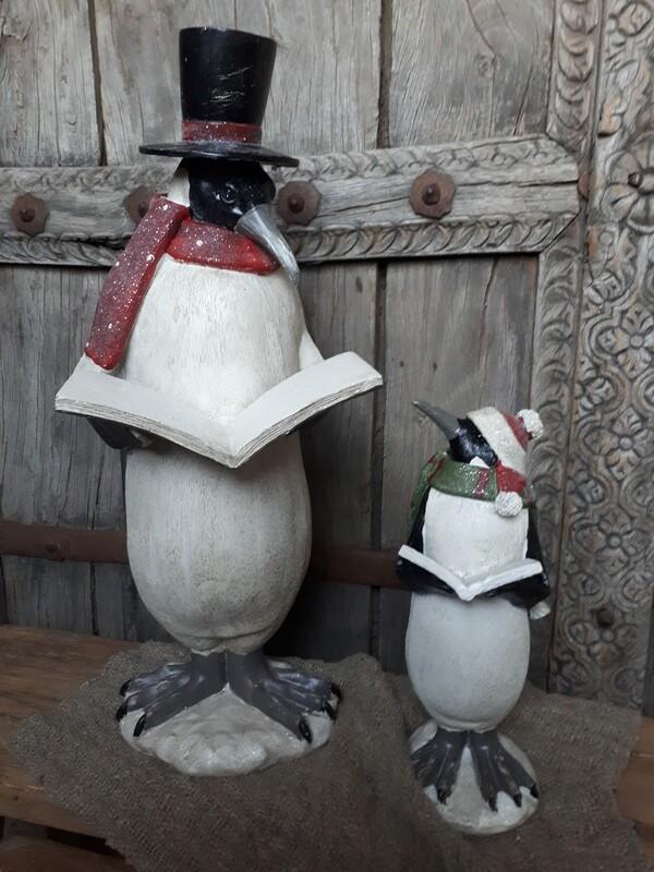 Pinguïn met boek rode sjaal