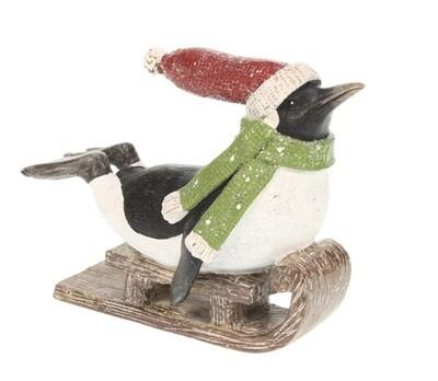 Pinguïn op slee