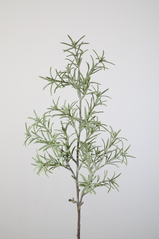 Gras varen 60 cm