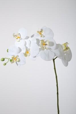 Orchidee 68 cm