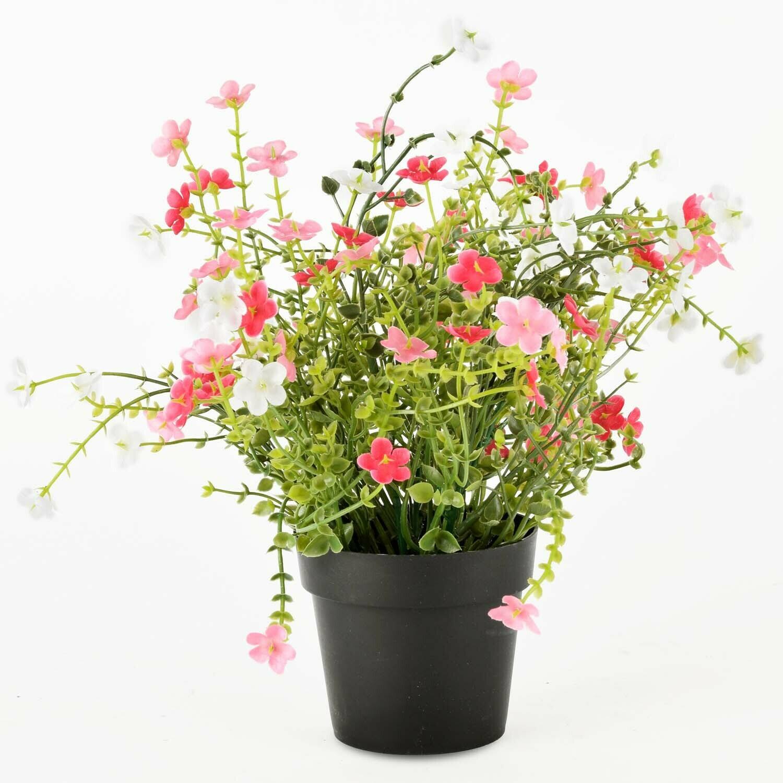 Bloempot met rode/roze bloemen