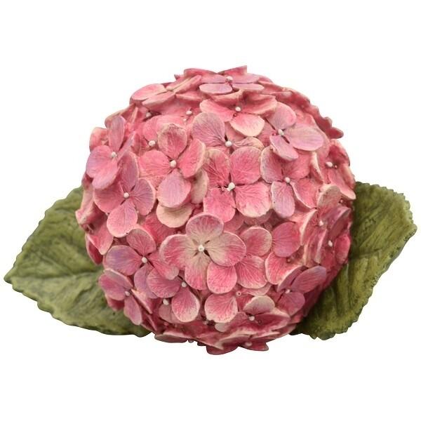 Stenen hortensia