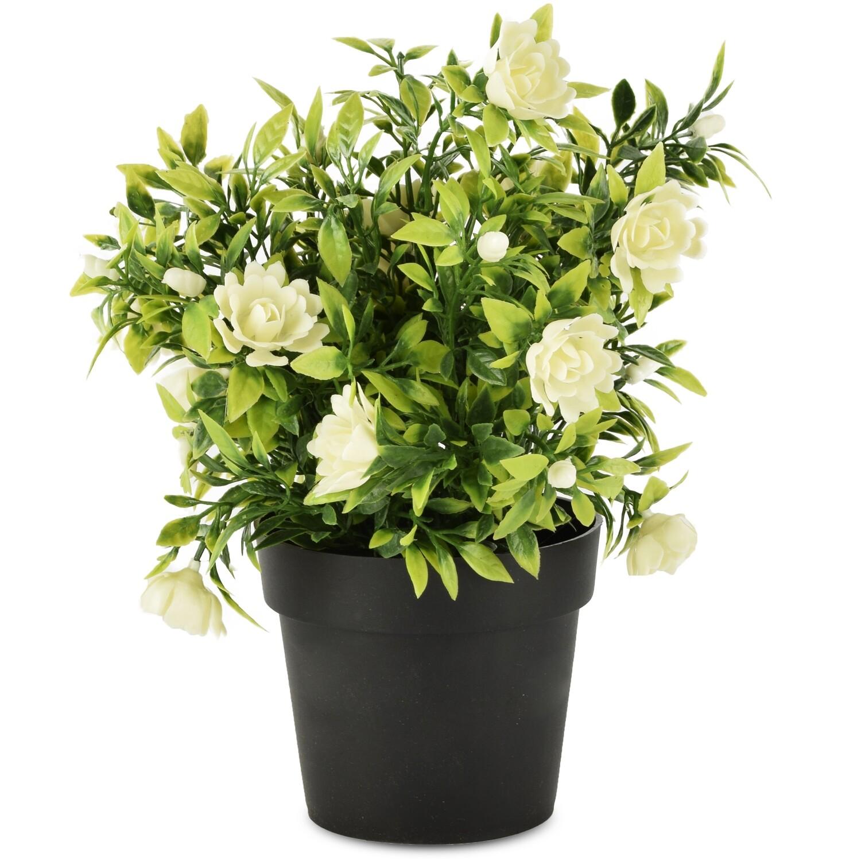 Bloempot met witte roosjes