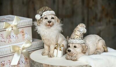 Set 2 hondjes met cadeautje