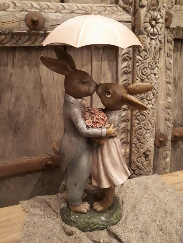 Romantisch hazenpaar onder paraplu