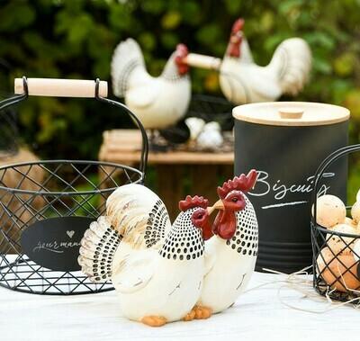 Koppel kippen wit/zwart