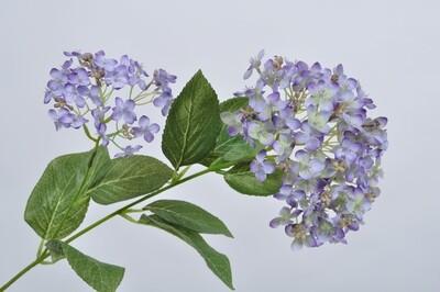 Hortensia tak lavendel 76 cm