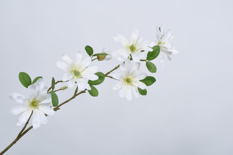 Magnolia tak crème 87 cm