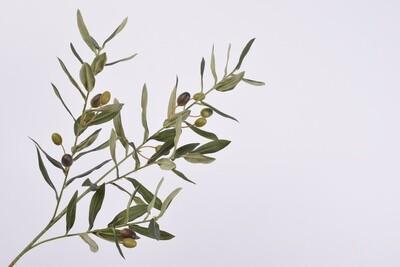 Bladtak olijf groen 76 cm