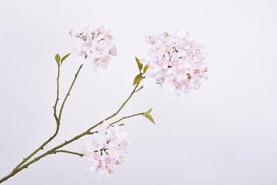 Bloesem wit/roze 70 cm