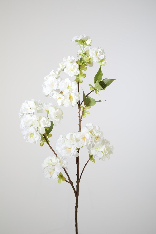 Cherry Blossom 80 cm