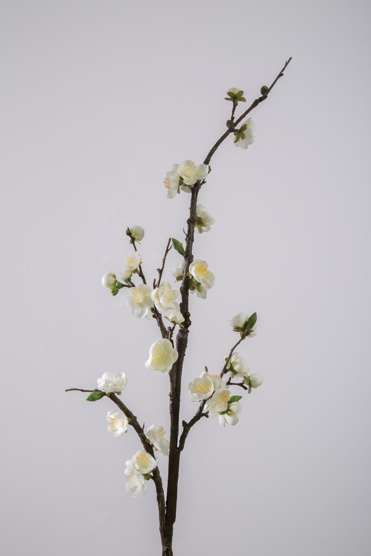 Blossom 102 cm