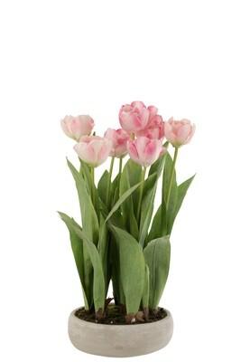 Tulpen In Pot Cement Grijs Plastiek Roze/Groen