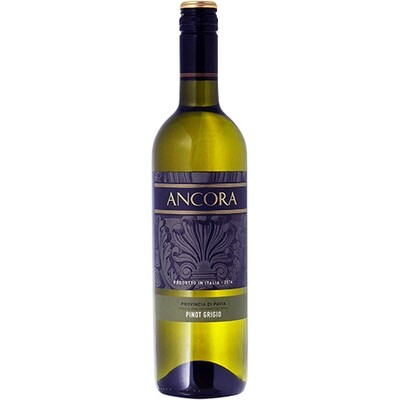 Pinot Grigio Ancora - Italy