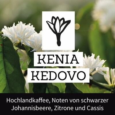 Kenia Kedovo - Projektkaffee