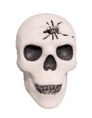 Bath Bomb - Skull (Boo Berry)