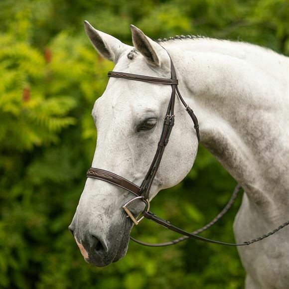 37512 Joseph Sterling Hartford Hunter Bridle