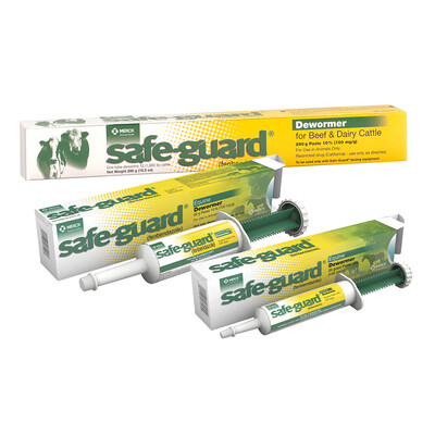 12526 1 SAFE GUARD PST 25GM HORSE
