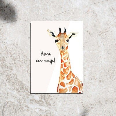 Postcard - 'Hoera een meisje!'