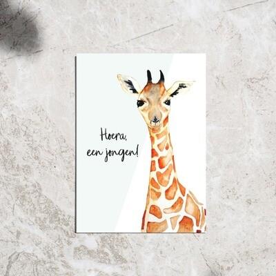 Postcard - 'Hoera een jongen!'