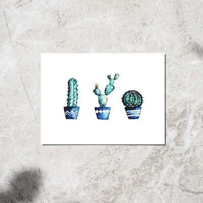 Postcard set of 2 - Cacti