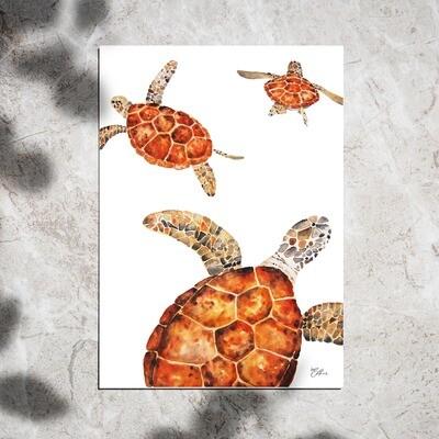 Art Print - Watercolor Turtles