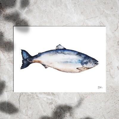 Art Print - Watercolor Salmon