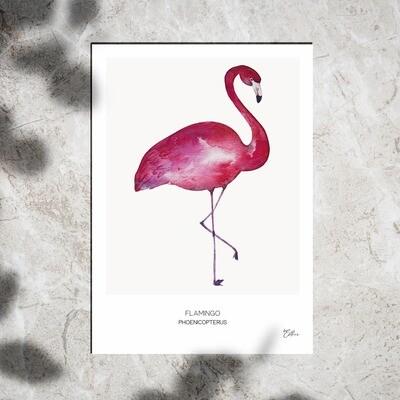 Art Print - Watercolor Flamingo