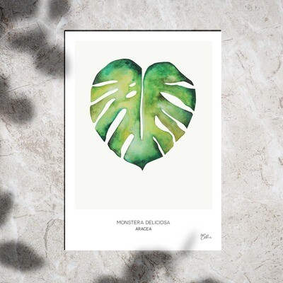 Art Print - Watercolor Monstera Leaf
