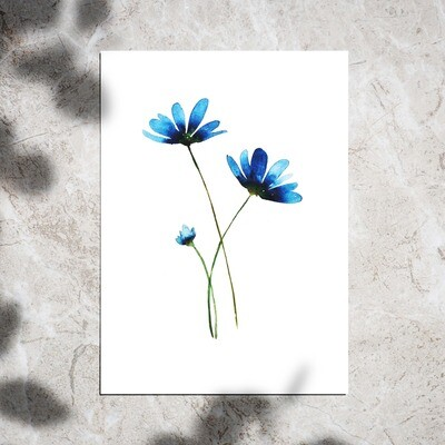 Postcard - Blue Flowers