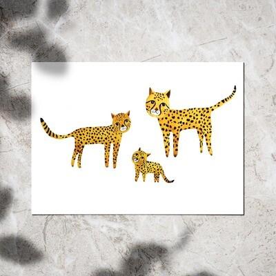 Postcard - Cheetahs