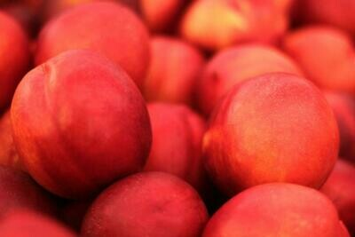 LOCAL! Yakima Yellow Nectarines, Large Per lb.
