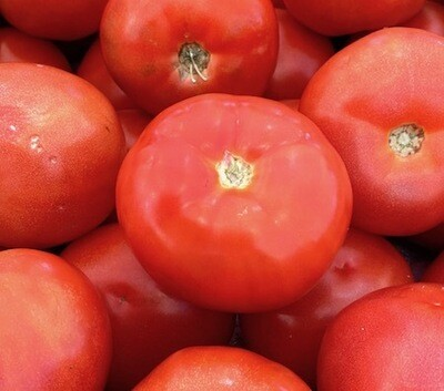 LOCAL! Yakima Beefsteak Tomatoes, Per lb.