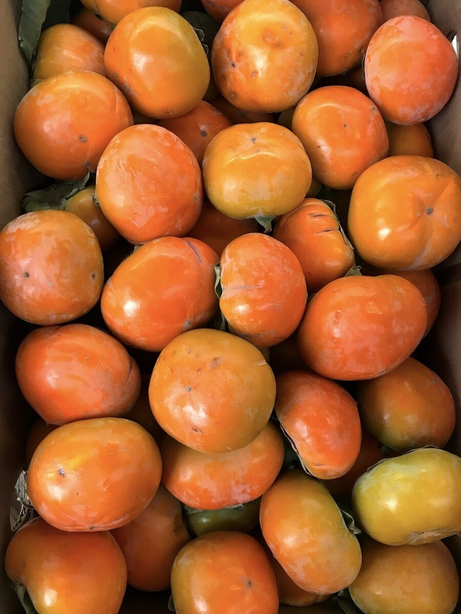 NEW! Chocolate Persimmons Per lb.
