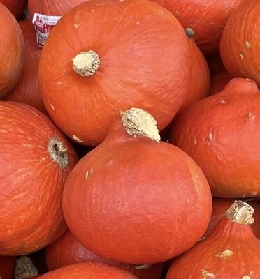 Squash - Red Kuri EACH (@ $.99/lb.)