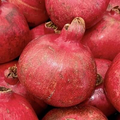 NEW! JUMBO Pomegranates EACH