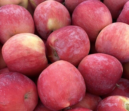 New Crop! Fuji Apples, Unwaxed EACH (@ $1.29/lb.)